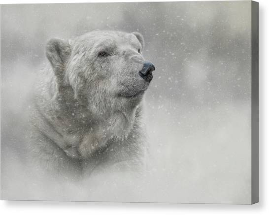 Prince Of The North Pole Canvas Print