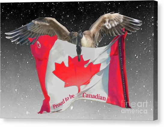 Proud To Be Canadian Canvas Print