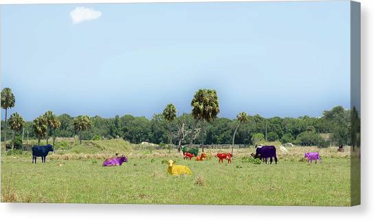 Psychedelic Cows Canvas Print