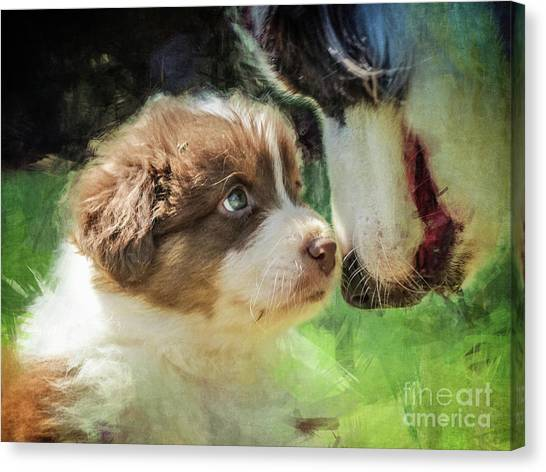 Puppy Dog Canvas Print