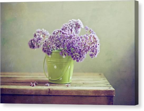 Purple Flowers In Green Bucket Canvas Print