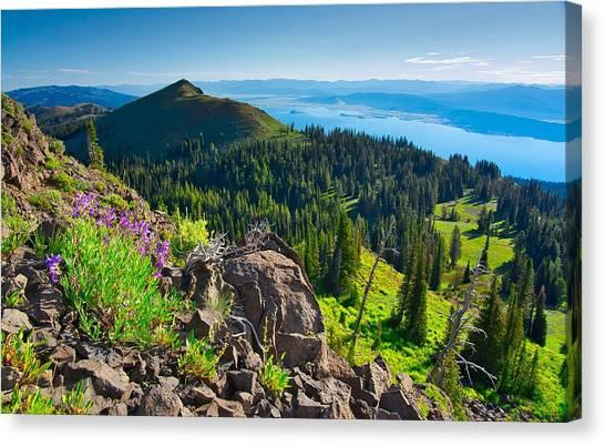 Purple Vista Canvas Print