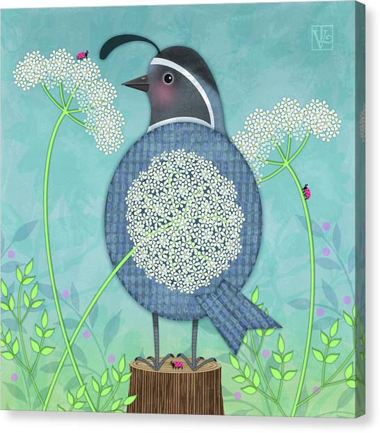 Q Is For Quail And Queen Anne's Lace Canvas Print