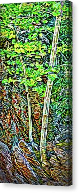Canvas Print featuring the digital art Quiet Forest Interlude by Joel Bruce Wallach