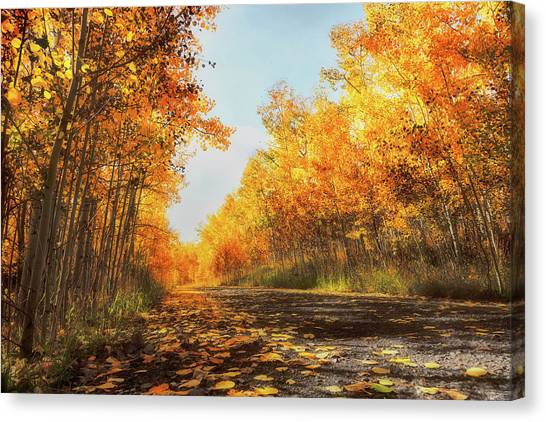Canvas Print featuring the photograph Quiet Time by Rick Furmanek