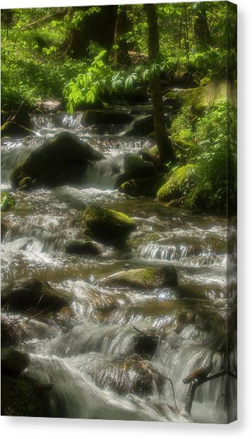 Southern Rock Canvas Print - Radiant Water, Smokies by Jerry Whaley