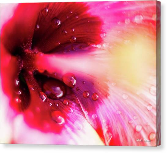 Rain Flower Canvas Print