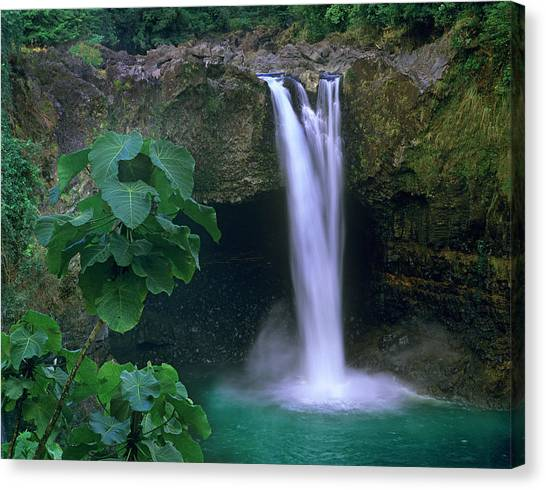 Rainbow Falls Cascading Into Pool, Big Canvas Print by Tim Fitzharris/ Minden Pictures