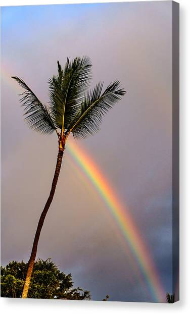 Rainbow Just Before Sunset Canvas Print