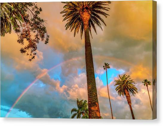 Rainbow Over The Palms Canvas Print