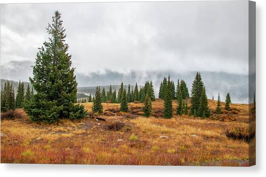 Rainy Day At Molas Pass Canvas Print