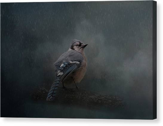 Rainy Day Blues  Canvas Print