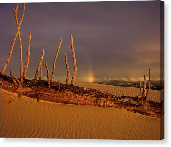 Rainy Day Dunes Canvas Print