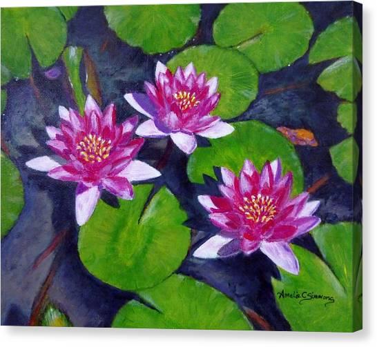 Rancho Water Lilies Canvas Print