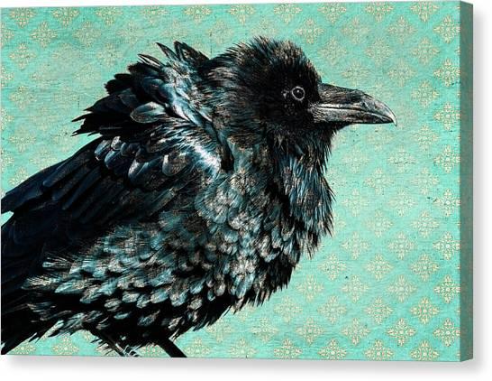 Raven Maven Canvas Print