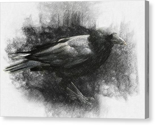 Raven Canvas Print - Raven by Zapista Zapista