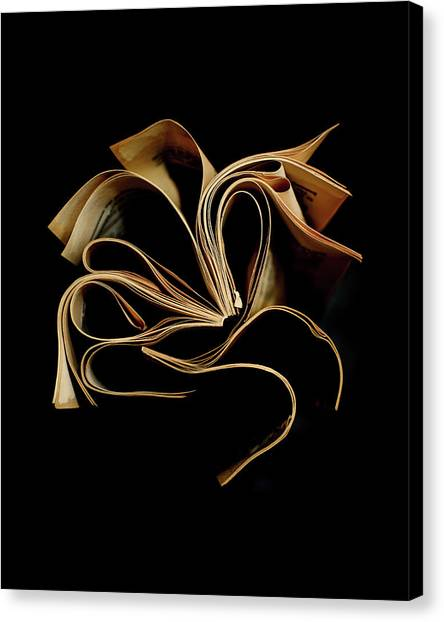 Read Canvas Print