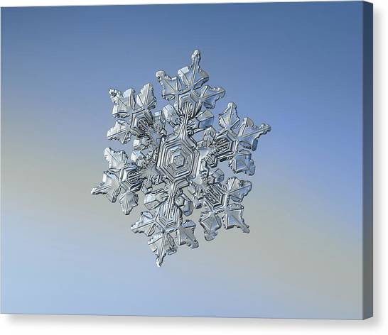 Canvas Print featuring the photograph Real Snowflake - 05-feb-2018 - 17 by Alexey Kljatov