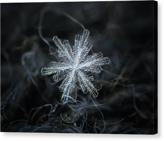 Canvas Print featuring the photograph Real Snowflake - 18-dec-2018 - 3 by Alexey Kljatov