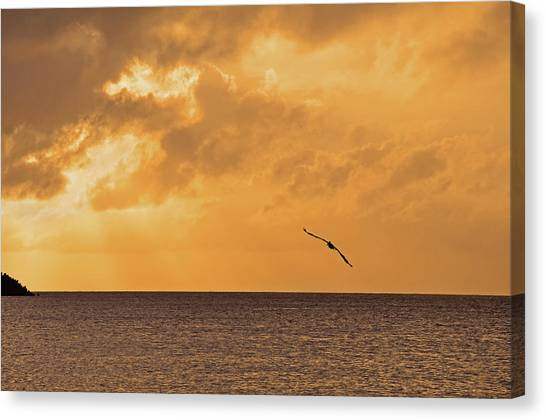 Reclining Day Canvas Print