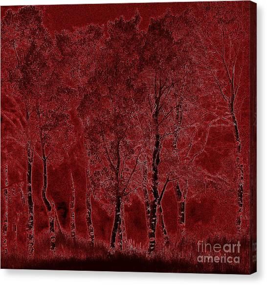 Red Aspen Grove Canvas Print