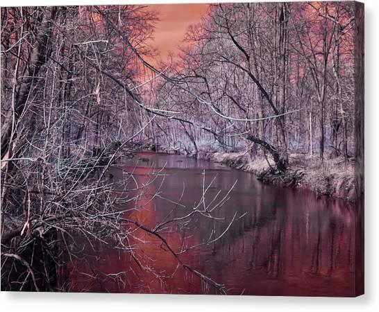 Red Creek Canvas Print
