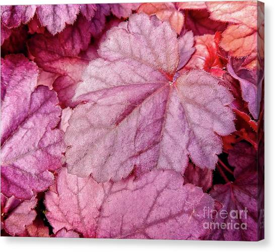 Canvas Print featuring the digital art Red Heart Leaf by Dee Flouton