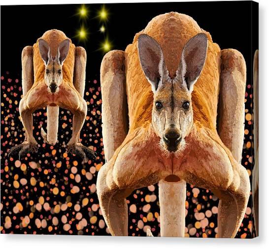 Red Kangaroos Canvas Print