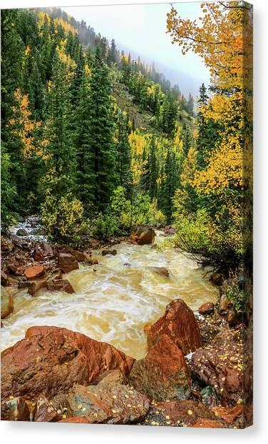 Red Mountain Creek In San Juan Mountains Canvas Print