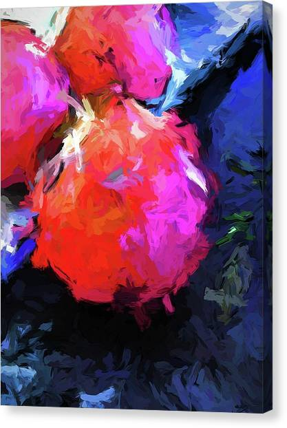 Red Pomegranate In The Blue Light Canvas Print