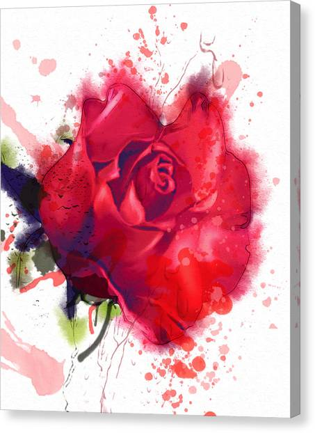 Placard Canvas Print - Red Rose. Watercolor by Pacrovka