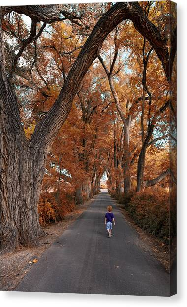 Redhead Fall Walkabout Canvas Print