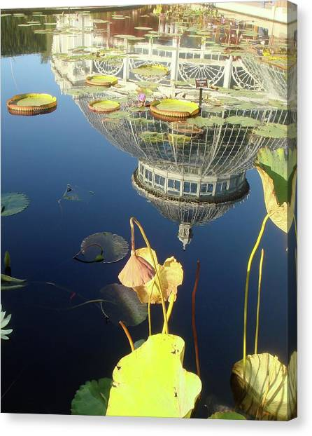 Reflection Of Botanical Garden Canvas Print