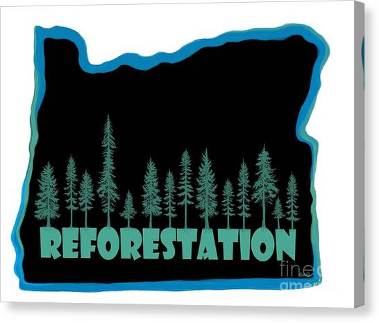 Canvas Print - Reforestation by Nick Gustafson