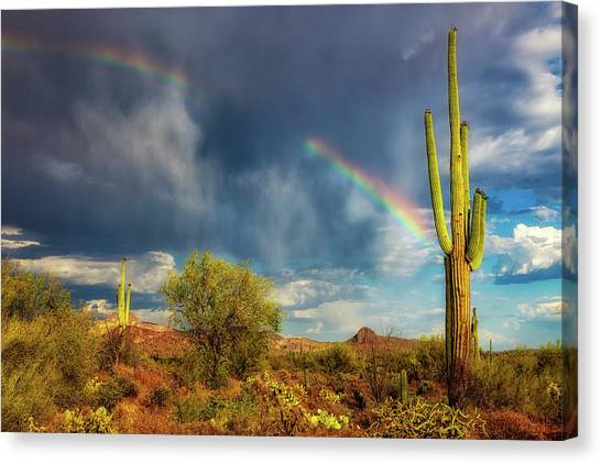Canvas Print featuring the photograph Respite From The Storm by Rick Furmanek