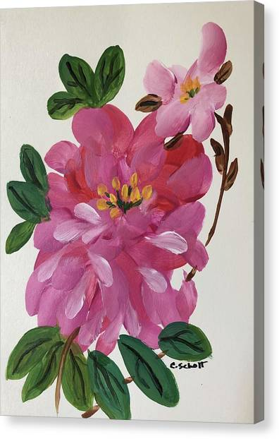 Rhododendron Canvas Print