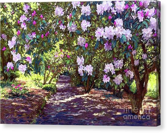 Alabama Canvas Print - Rhododendron Garden by Jane Small