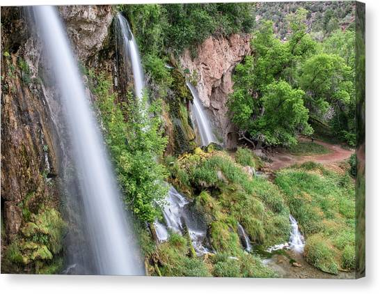 Rifle Falls Canvas Print