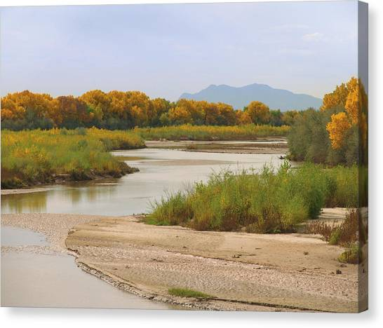 Rio Grande River Canvas Print - Rio Grande And Cottonwoods In Autumn by Duckycards
