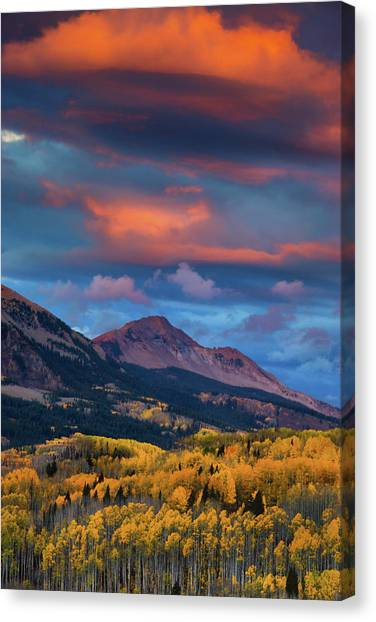 Rising Color  Canvas Print