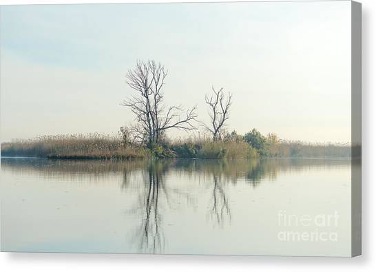 Delta Canvas Print - River With Tree Reflected In The Delta by Vadim Petrakov