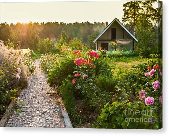 Shrub Canvas Print - Road In The Beautiful Garden by Scorpp