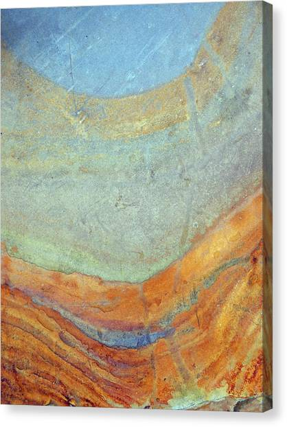 Rock Stain Abstract 7 Canvas Print