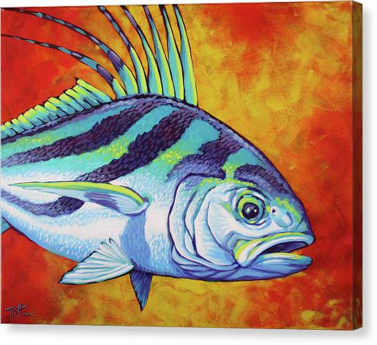 Rooster Fish 2 Canvas Print