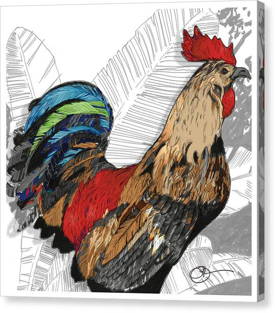 Rooster On Big Island Canvas Print