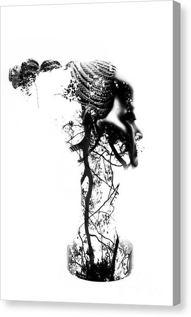See Canvas Print - Roots by Jorgo Photography - Wall Art Gallery