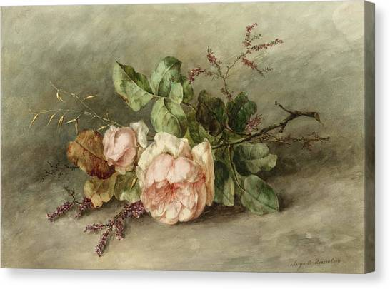 Rose In Bloom Canvas Print - Roses, 19th Century by Margaretha Roosenboom