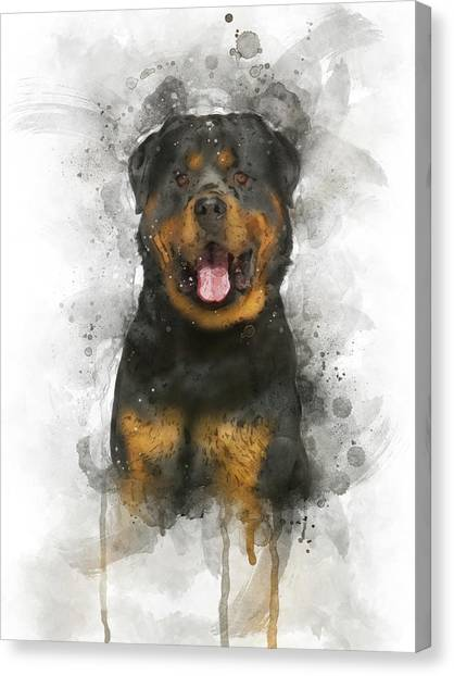 Rottweilers Canvas Print - Rottweiler by Aged Pixel