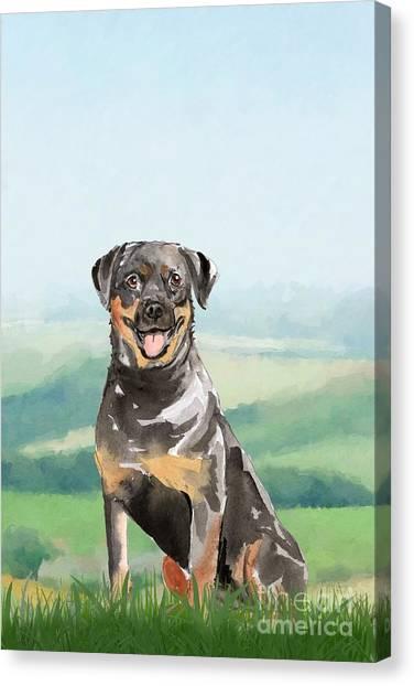Purebred Canvas Print - Rottweiler by John Edwards