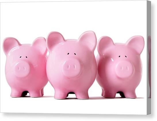 Row Of Pink Piggy Banks Canvas Print by Hatman12